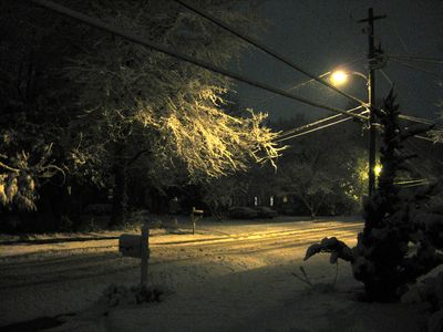 Night snow1